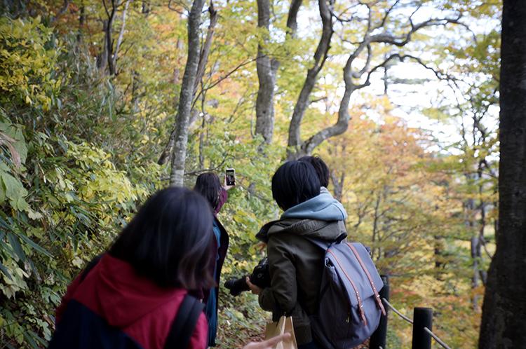 Kazuno Film