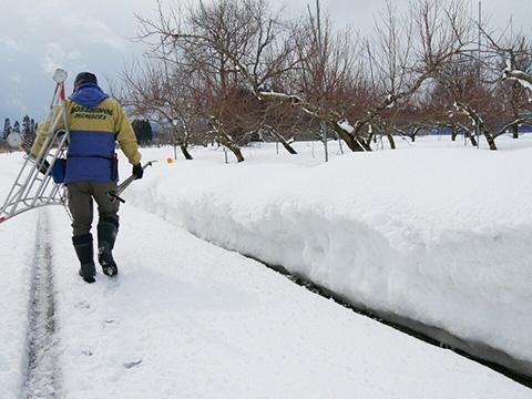 雪が溶けてきた道路
