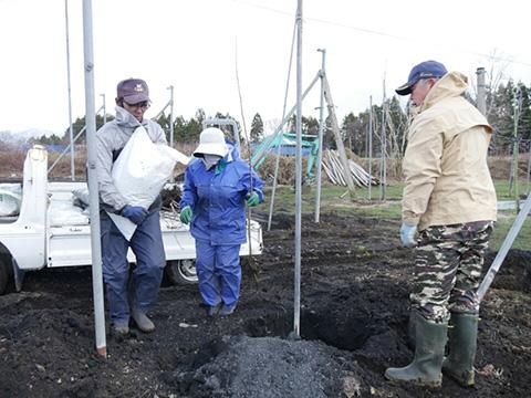 穴に肥料を入れる準備