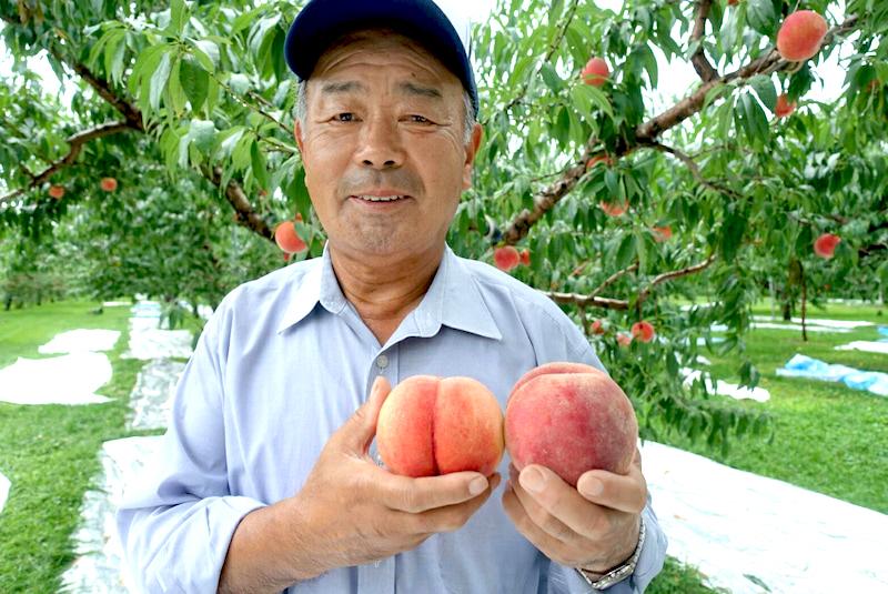 佐藤秀果園 北限の桃